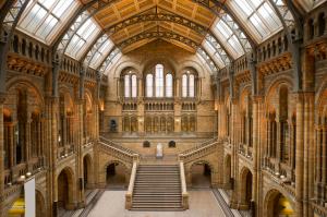 V Natural History Museum můžete zažít zemětřesení a i potom se pokochat krásným interiérem.